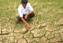 Scorching Temperatures and Drought Warnings