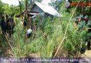Unhappy 420 for Elderly Battambang Man