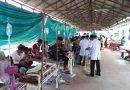 Dengue fever kills 21 children in Cambodia so far this year: health minister
