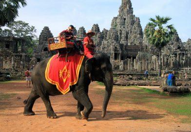 No More Elephants At Angkor Wat