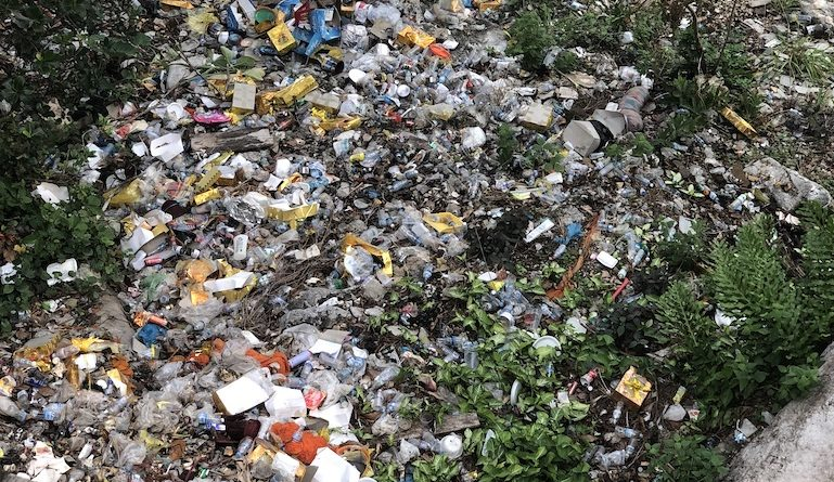 Single Use Plastic Ban Being Drafted