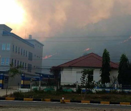 Forest Fire Behind Samlout, Battambang