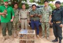 Rare Monkey Handed Over In Mondulkiri