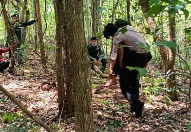 Man Injured Chasing Wild Elephant
